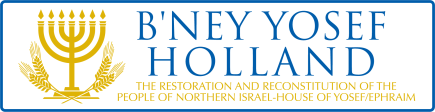 BneyHolland Logo 01